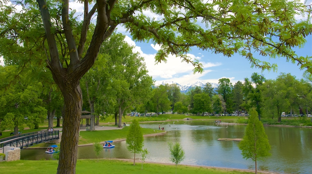 Liberty Park showing a park and a lake or waterhole