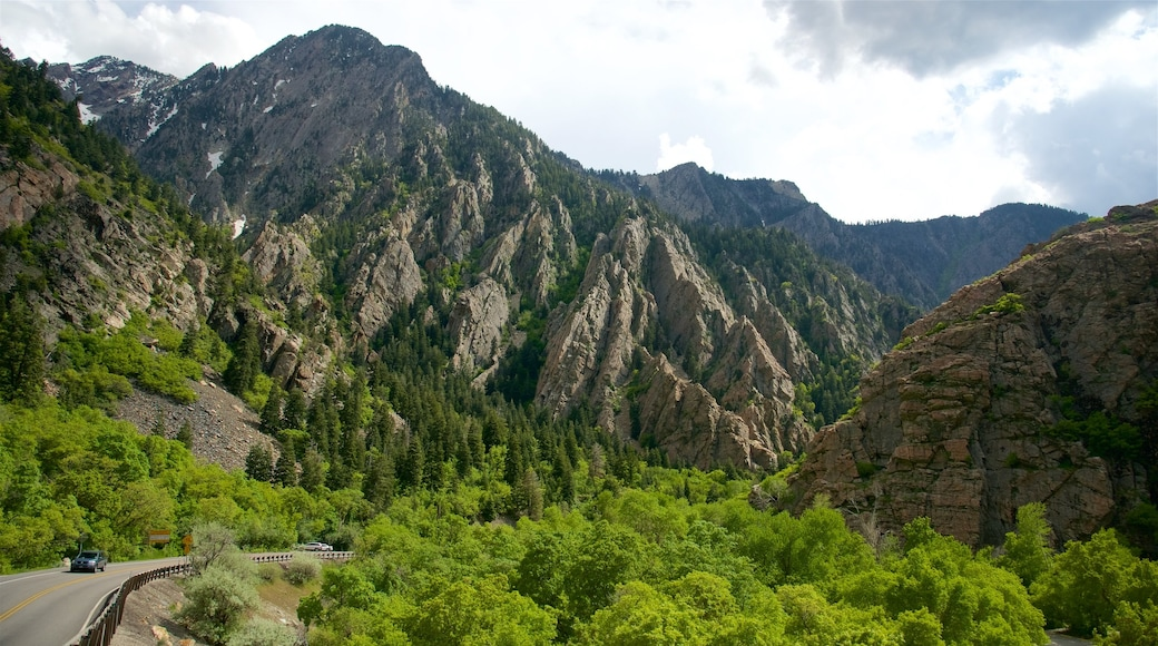 Salt Lake City which includes tranquil scenes and a gorge or canyon