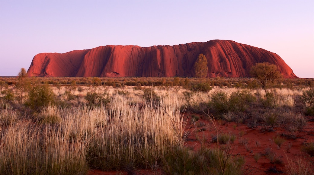 Australia featuring desert views and tranquil scenes