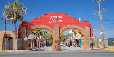 Puerto Nuevo showing tropical scenes