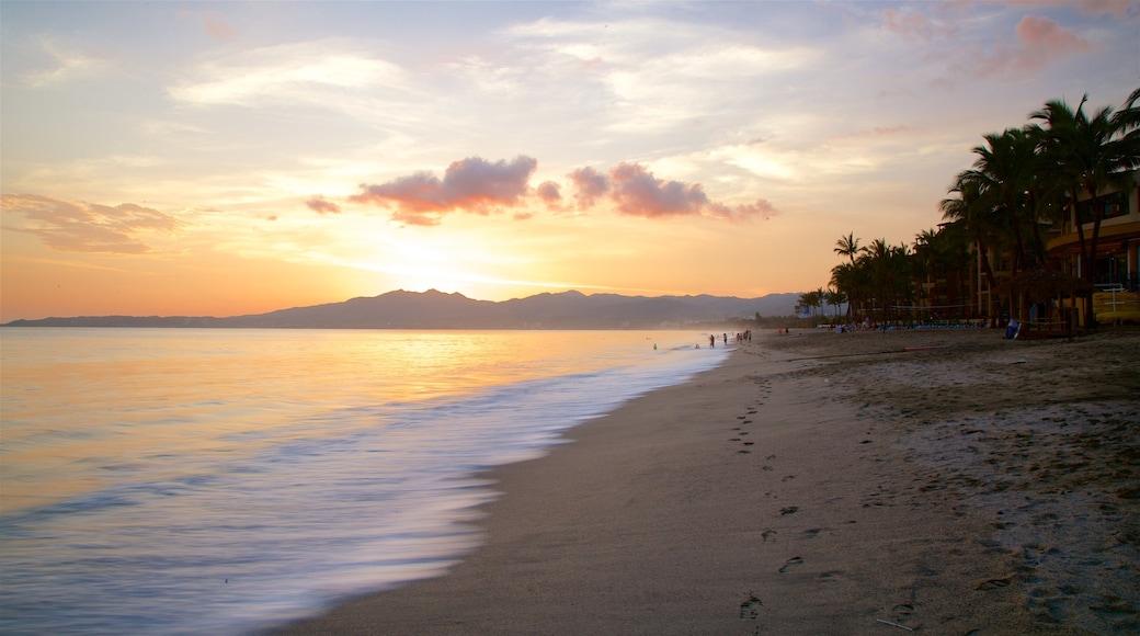 Nuevo Vallarta Beach showing tropical scenes, a sunset and a beach