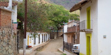 Copala which includes a small town or village