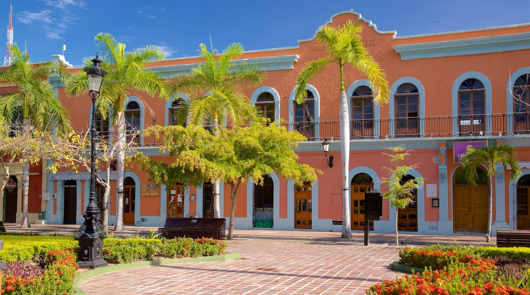 Plaza Machado which includes a garden