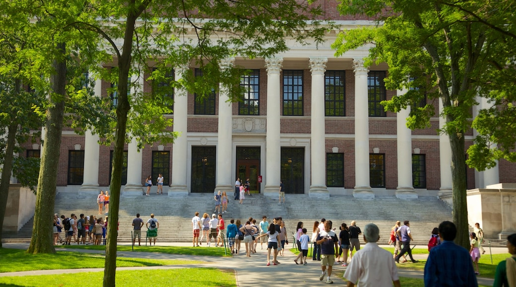 Harvard University which includes a city as well as a large group of people