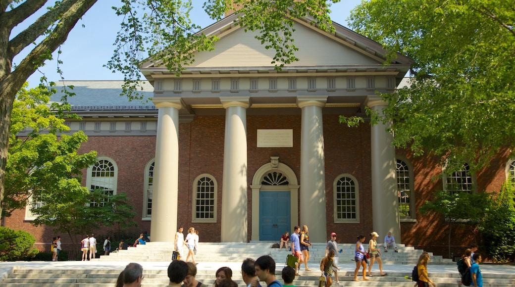Harvard University featuring heritage architecture