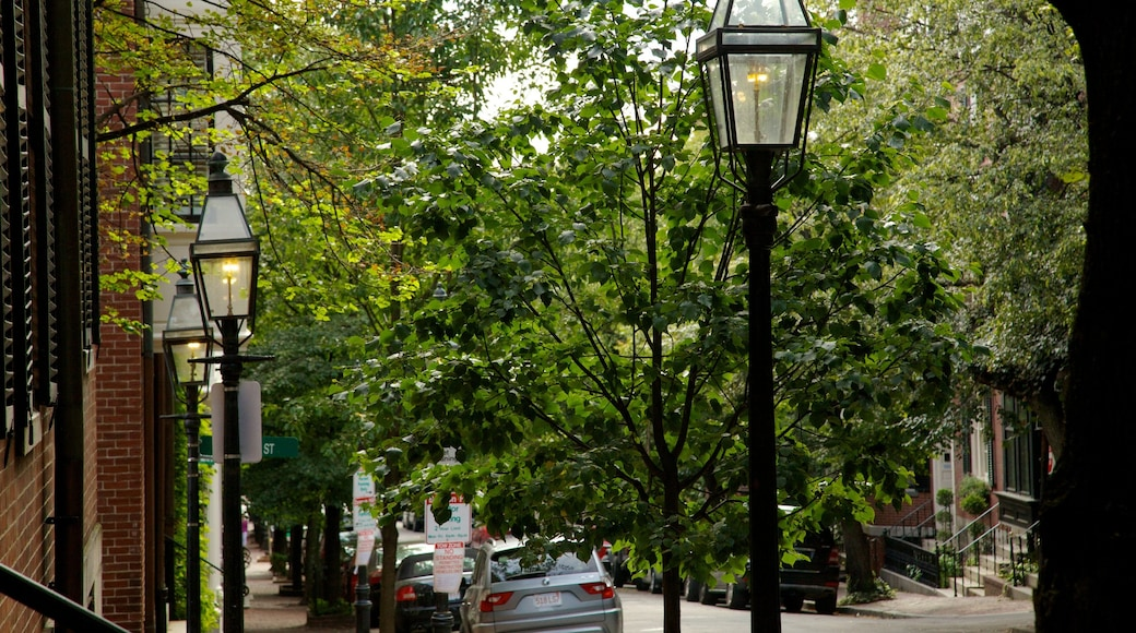 Beacon Hill which includes a city and street scenes