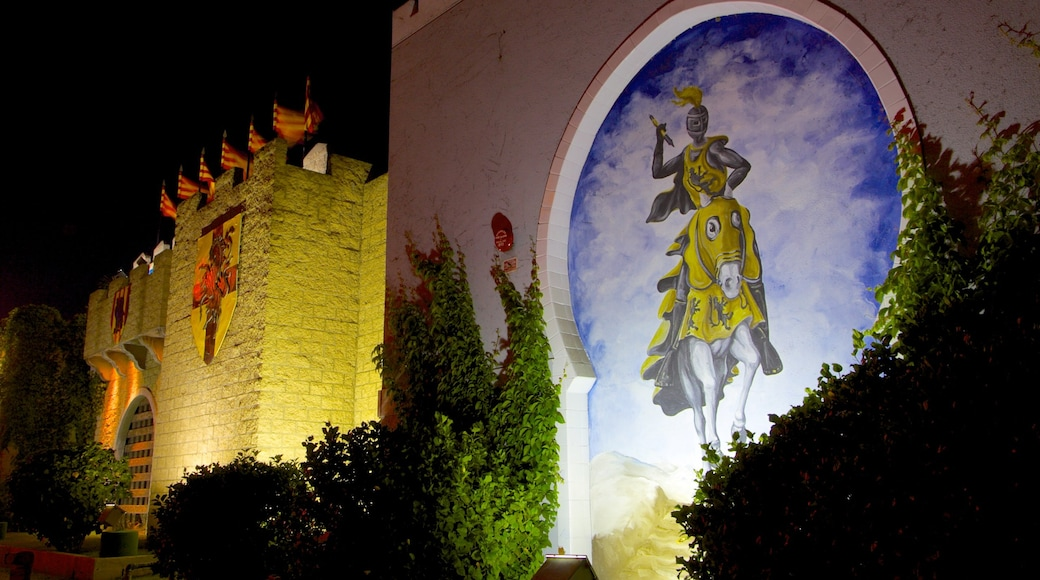 Medieval Times featuring performance art, night scenes and a park