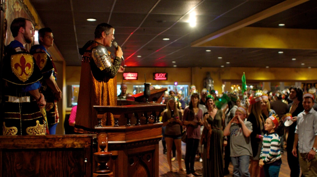 Medieval Times which includes performance art and interior views as well as a large group of people