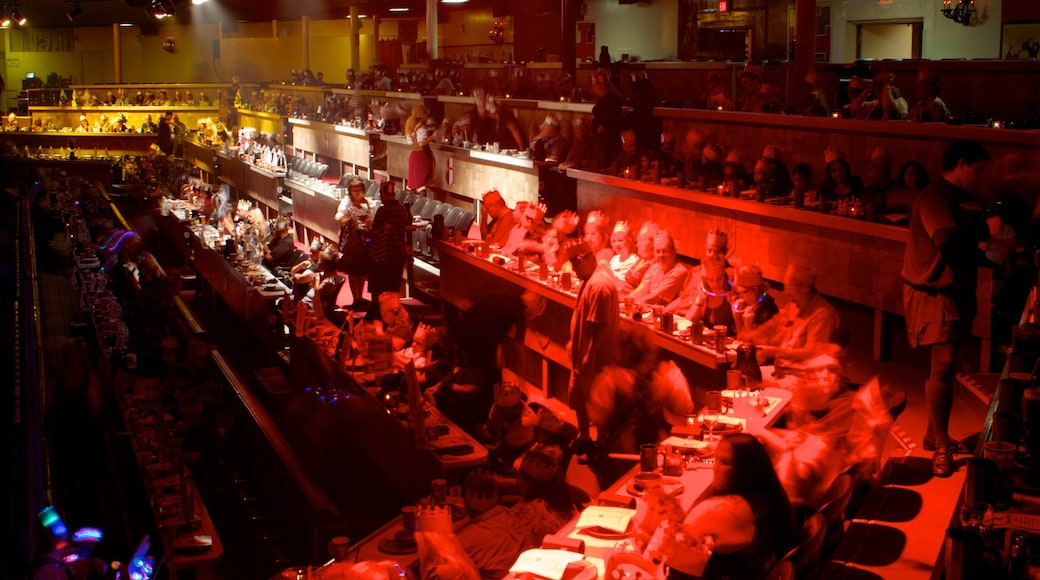 Medieval Times showing night scenes and interior views as well as a large group of people