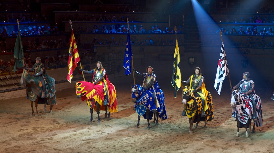Medieval Times which includes horse riding, interior views and performance art
