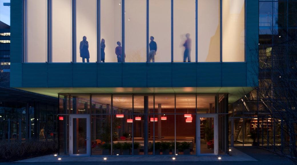 Isabella Stewart Gardner Museum showing night scenes, modern architecture and a city