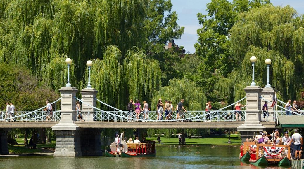 Boston Common das einen Park, Landschaften und Brücke