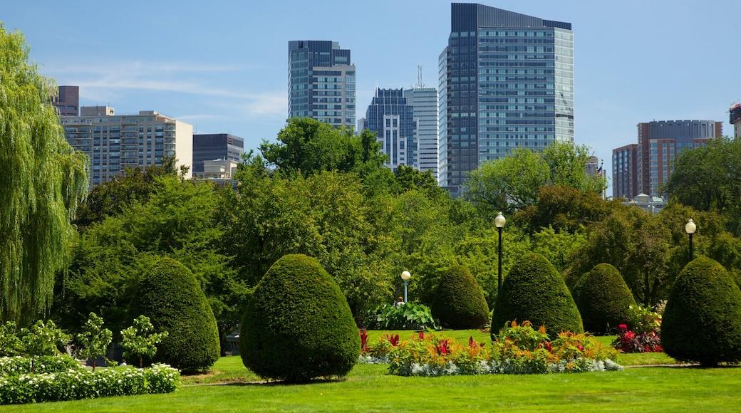 Boston Common welches beinhaltet Garten, Landschaften und Stadt