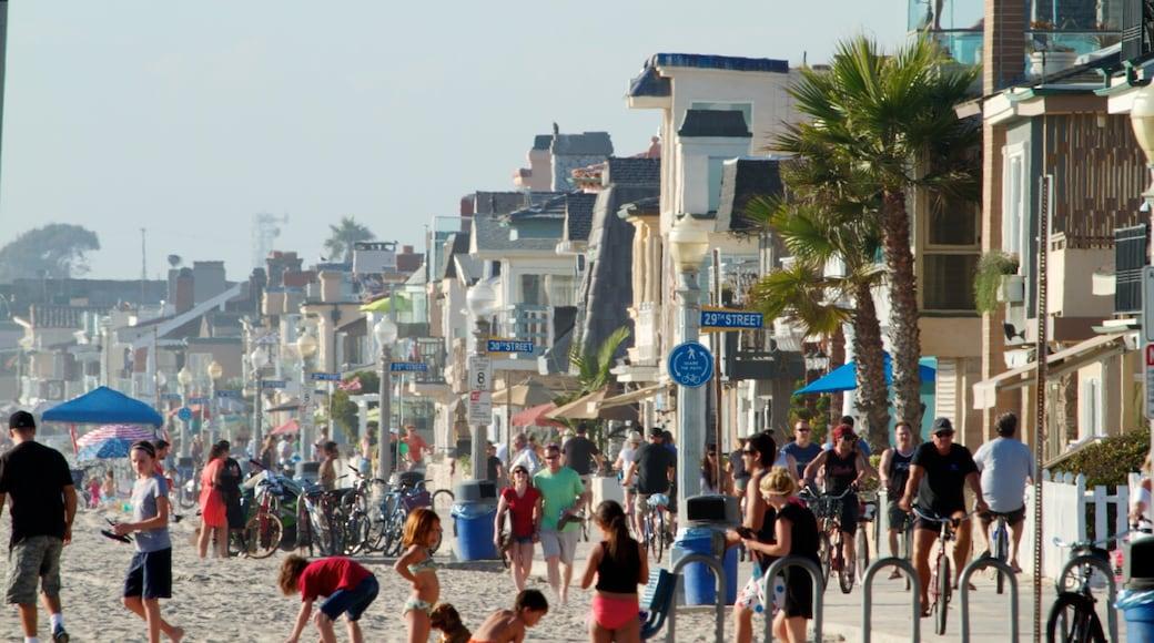 Newport Beach caracterizando cenas tropicais, cenas de rua e uma praia