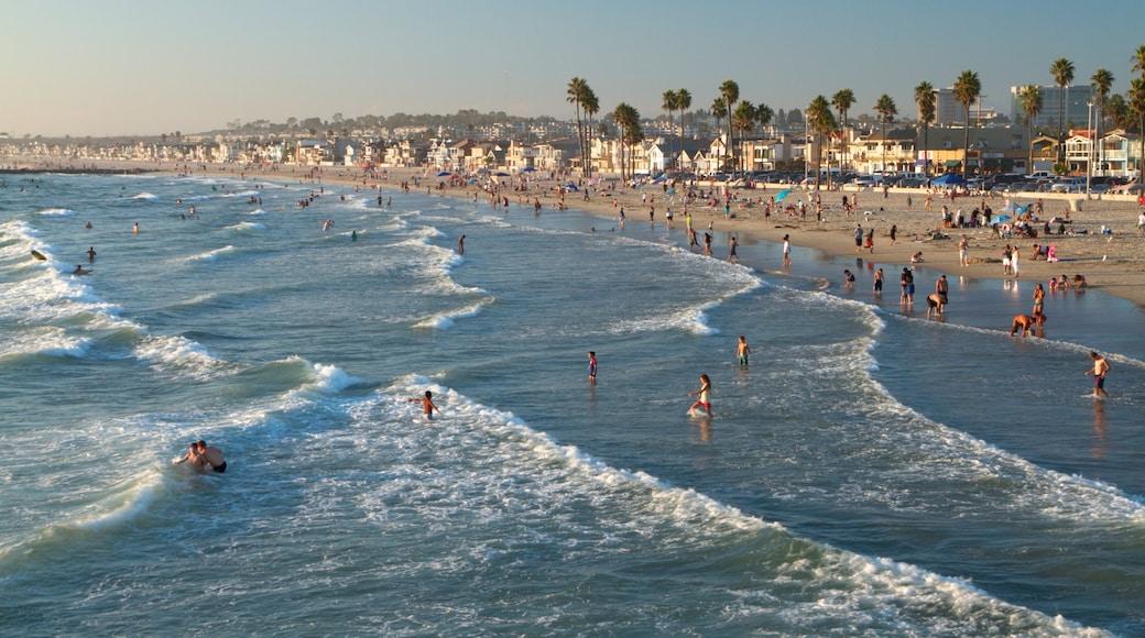 Newport Beach mostrando paisagem, cenas tropicais e natação
