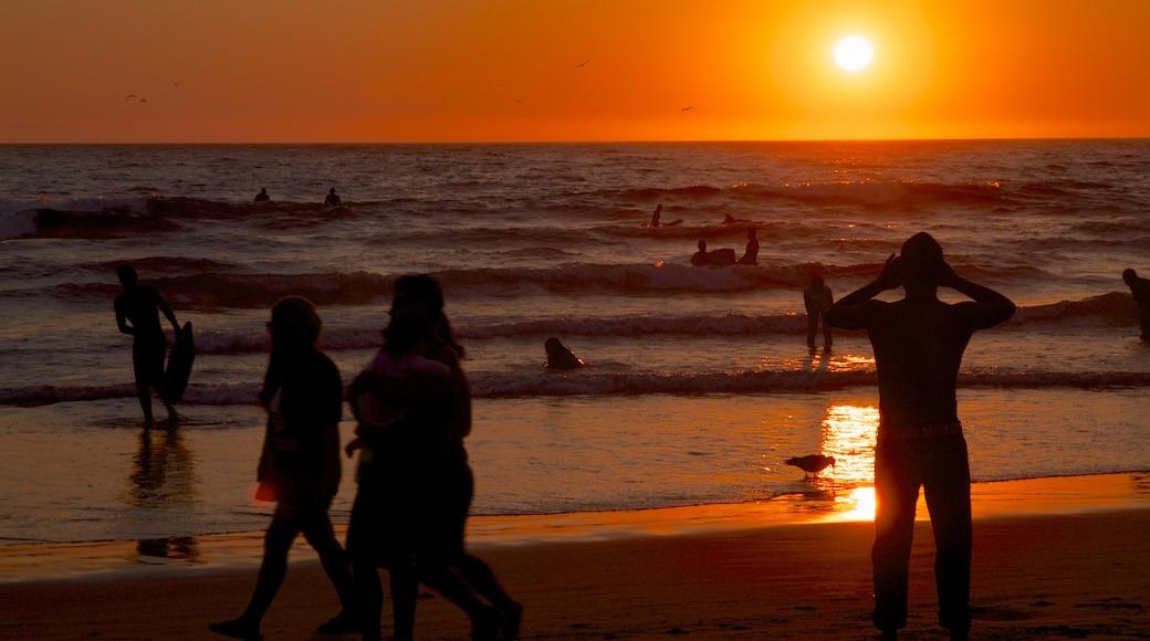 新港灘 设有 夕陽, 沙灘 和 滑浪