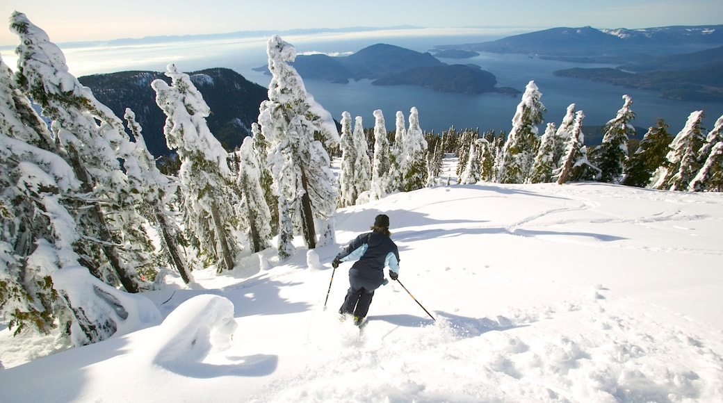 Cypress Mountain showing snow, landscape views and mountains