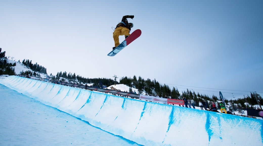 Cypress Mountain showing snow, a sporting event and snowboarding
