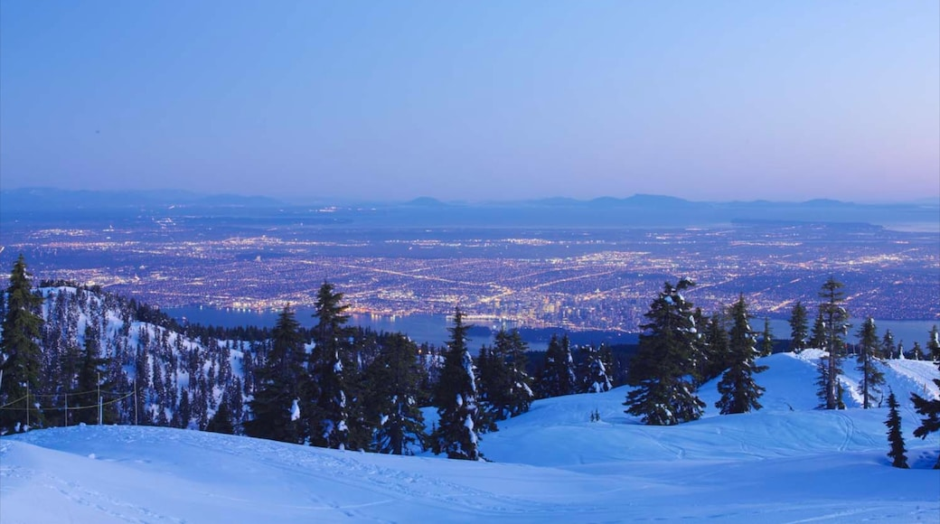 Grouse Mountain showing mountains, landscape views and snow