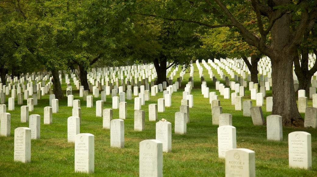 Arlington National Cemetery showing landscape views, a memorial and a park