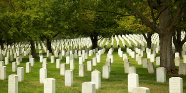 Arlington National Cemetery which includes a cemetery, a park and landscape views