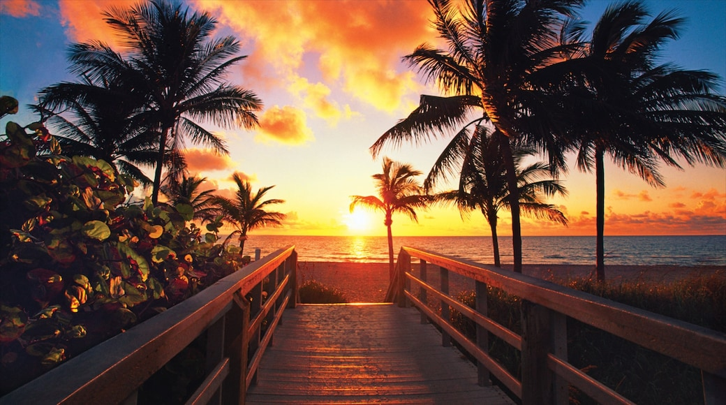 Fort Lauderdale which includes a sandy beach, a bay or harbour and a sunset