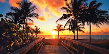 Fort Lauderdale das einen Bucht oder Hafen, tropische Szenerien und Sandstrand