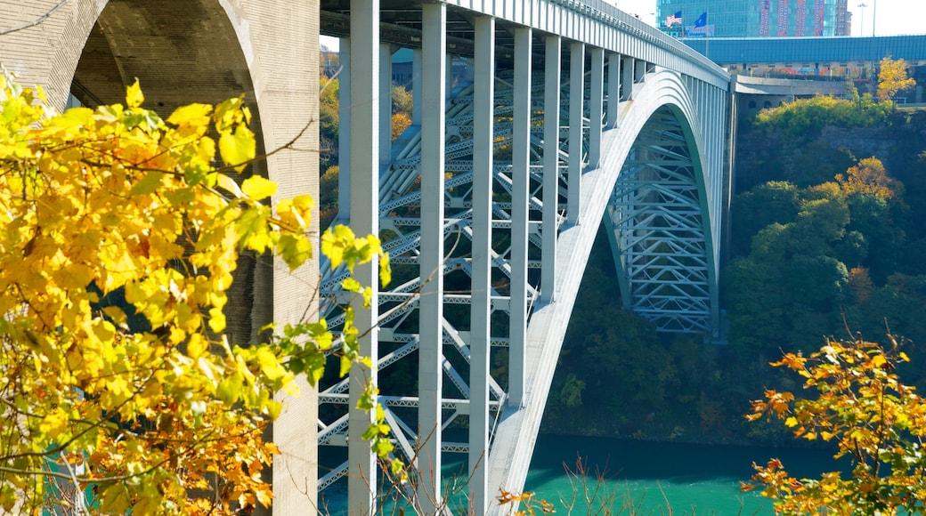 尼加拉瀑布 其中包括 現代建築 和 橋樑