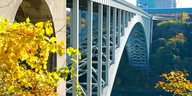 Niagara Falls which includes modern architecture and a bridge