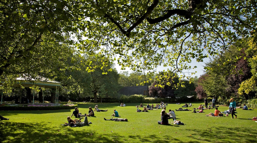 St. Stephen\'s Green which includes a park, picnicking and landscape views