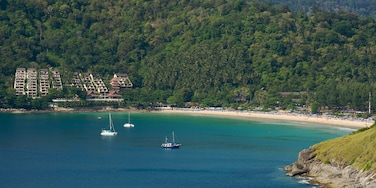 Nai Harn Beach showing landscape views, a bay or harbour and a coastal town