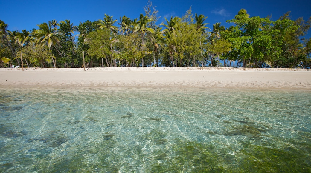 Yasawa Islands which includes island images, a beach and tropical scenes