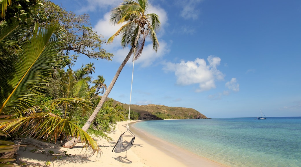 Yasawa Islands which includes a sandy beach and tropical scenes