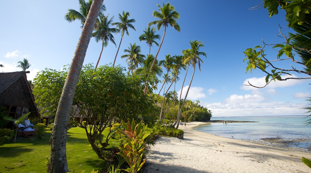 Coral Coast featuring a sandy beach and tropical scenes
