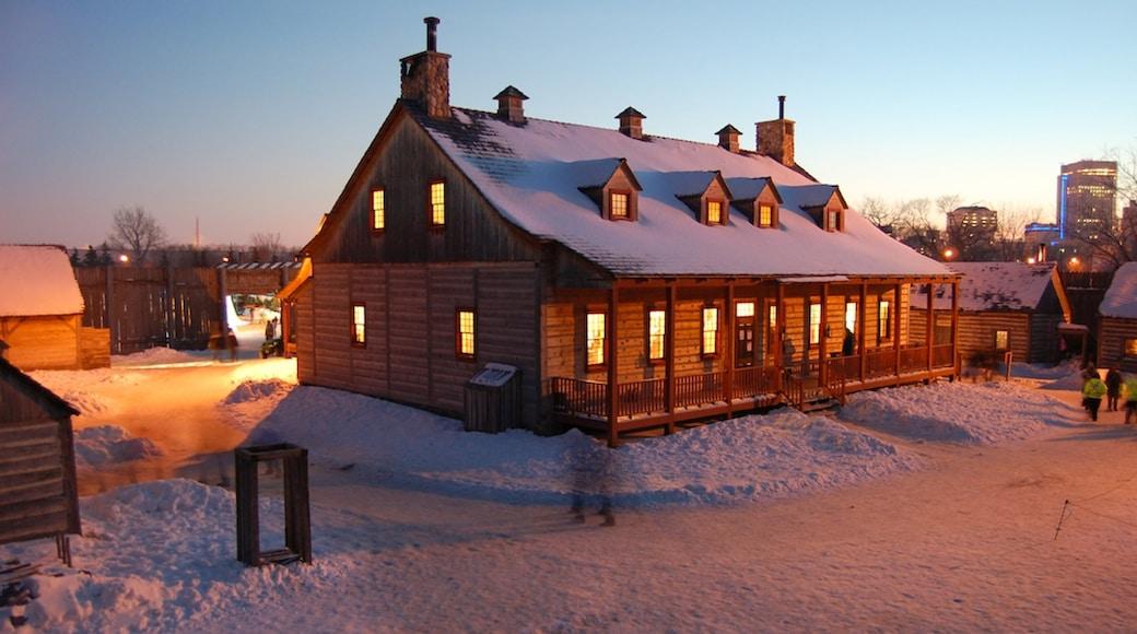 溫尼伯湖市 设有 小鎮或村莊 和 下雪