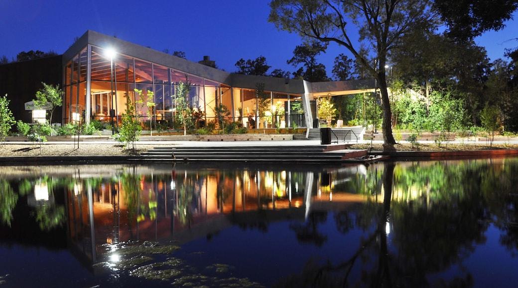 溫尼伯湖市 呈现出 湖泊或水池, 現代建築 和 夜景