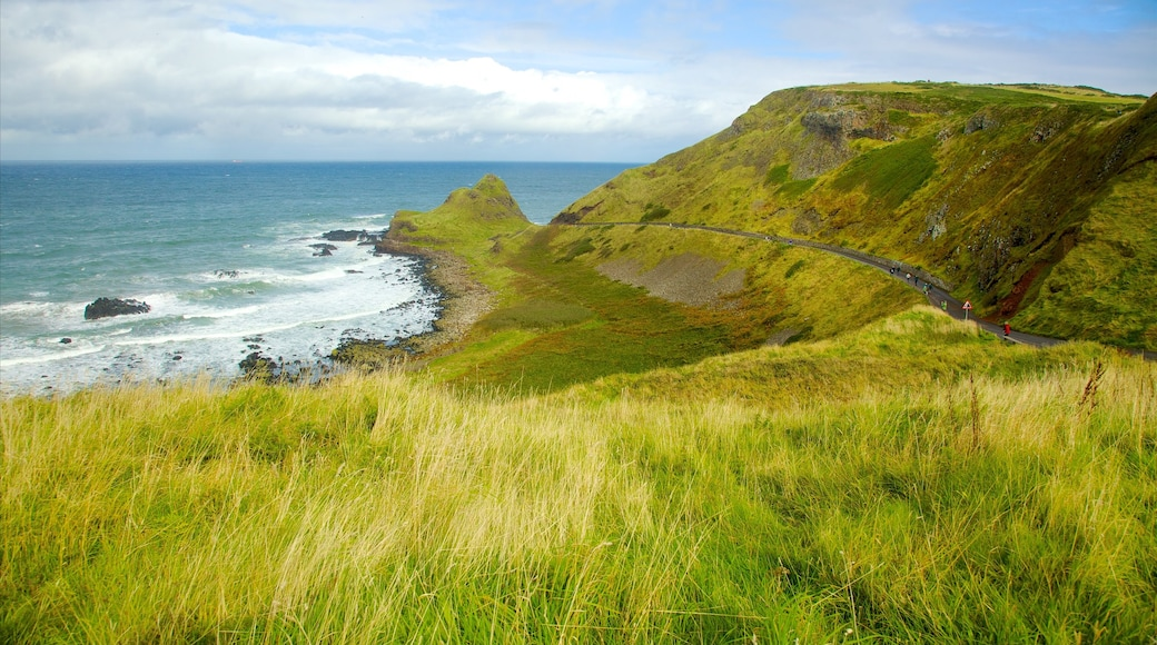Bushmills which includes rugged coastline, tranquil scenes and landscape views