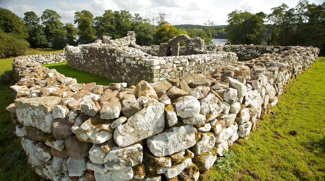 Enniskillen featuring a garden and building ruins