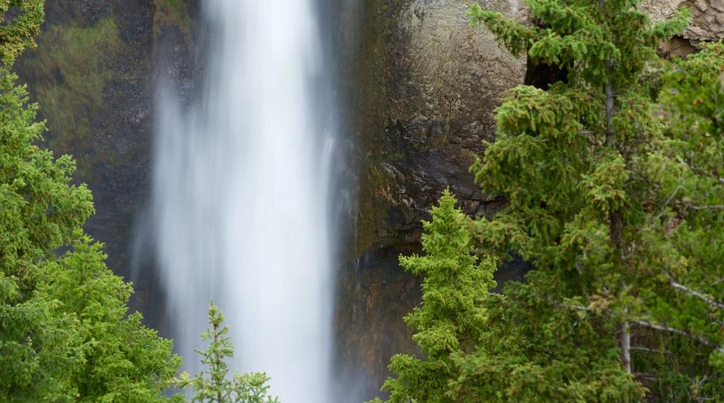 下墜塔 呈现出 瀑布