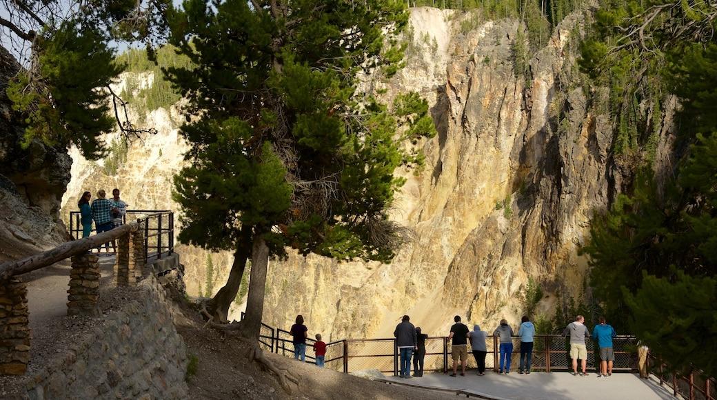 Grand Canyon de Yellowstone qui includes gorge ou canyon et vues aussi bien que petit groupe de personnes