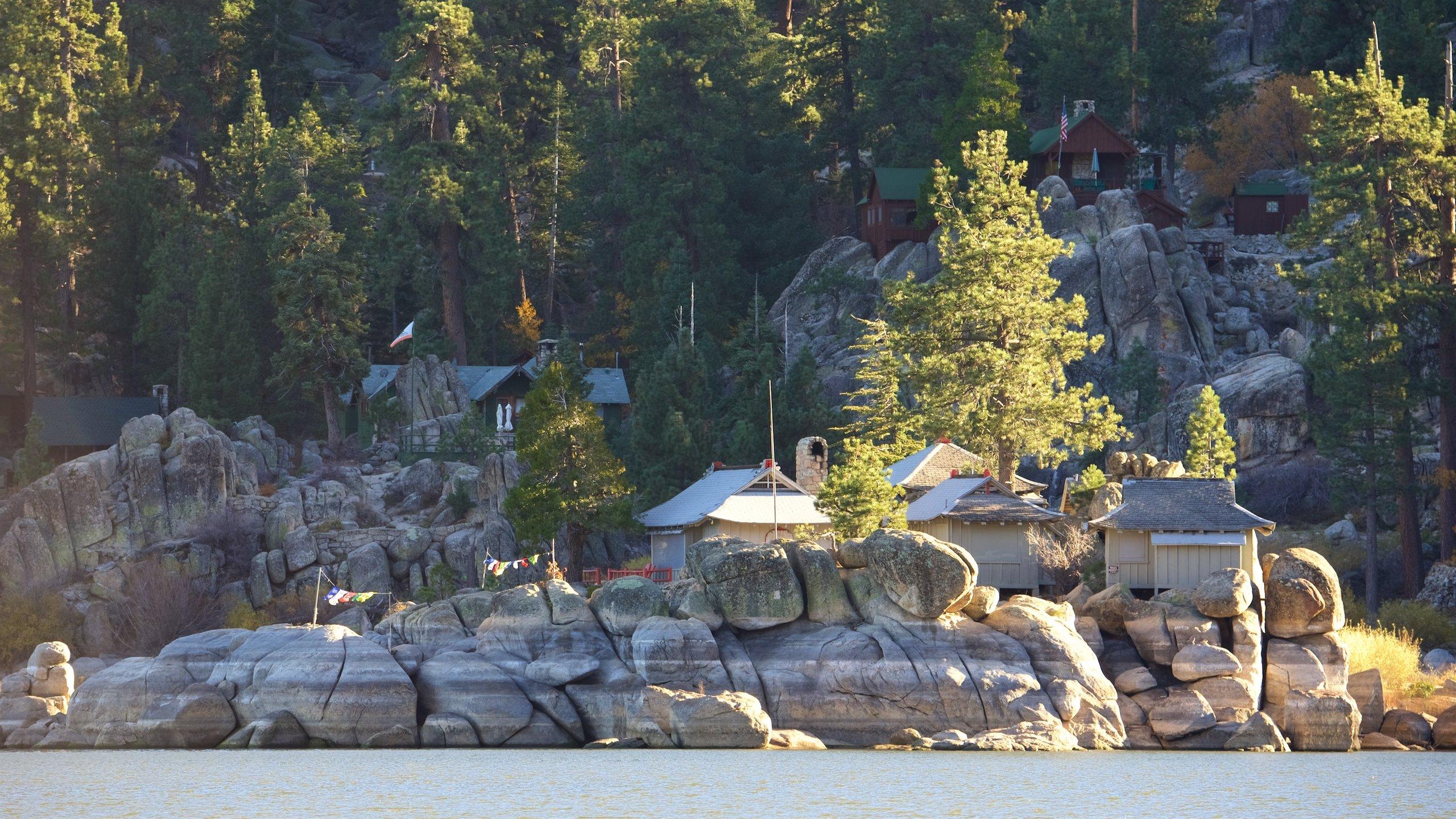 Top 10 Pet Friendly Hotels In Big Bear Lake, CA $46: Dog & Cat