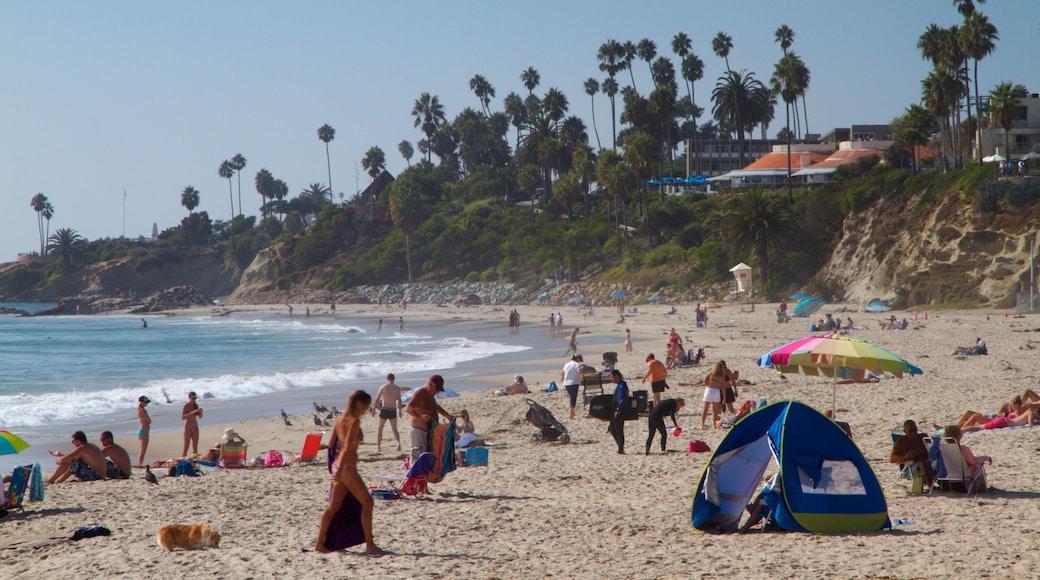 Laguna Beach montrant surf, plage de sable et vues littorales