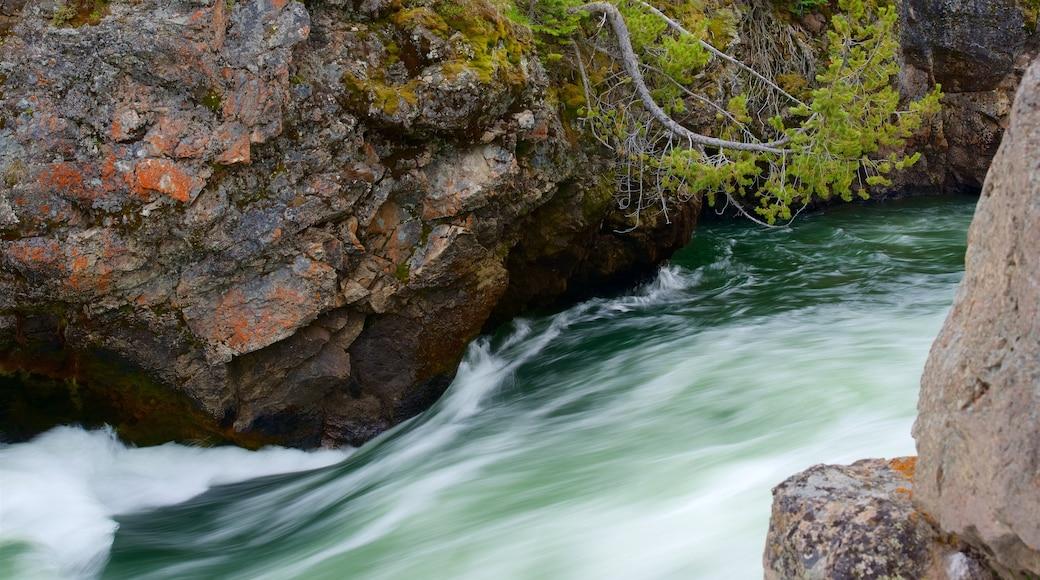 黃石大峽谷 设有 急流