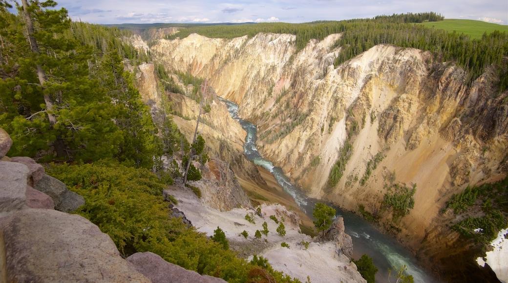 Grand Canyon de Yellowstone montrant rivière ou ruisseau, gorge ou canyon et scènes tranquilles