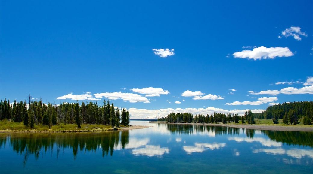 釣魚橋 设有 湖泊或水池