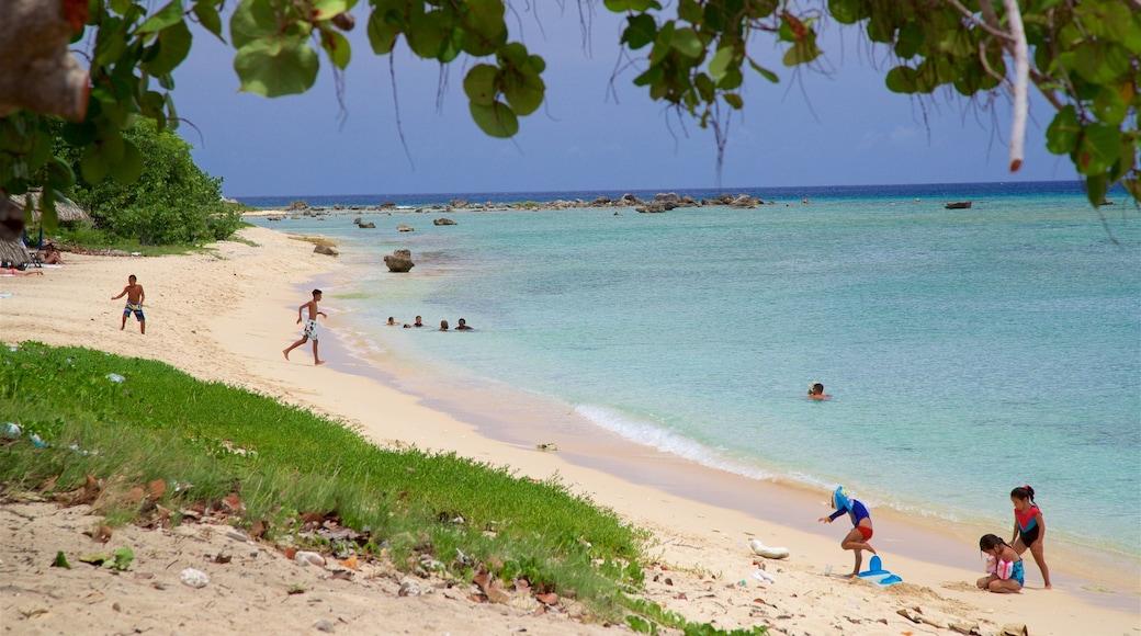 Ancon Beach qui includes scènes tropicales, plage et baignade