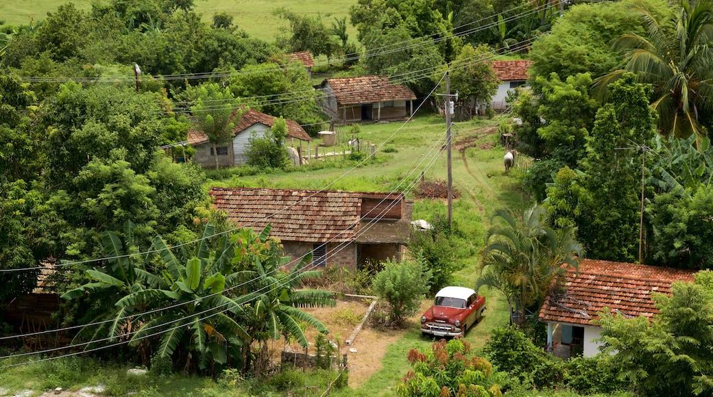 Manaca Iznaga mettant en vedette petite ville ou village