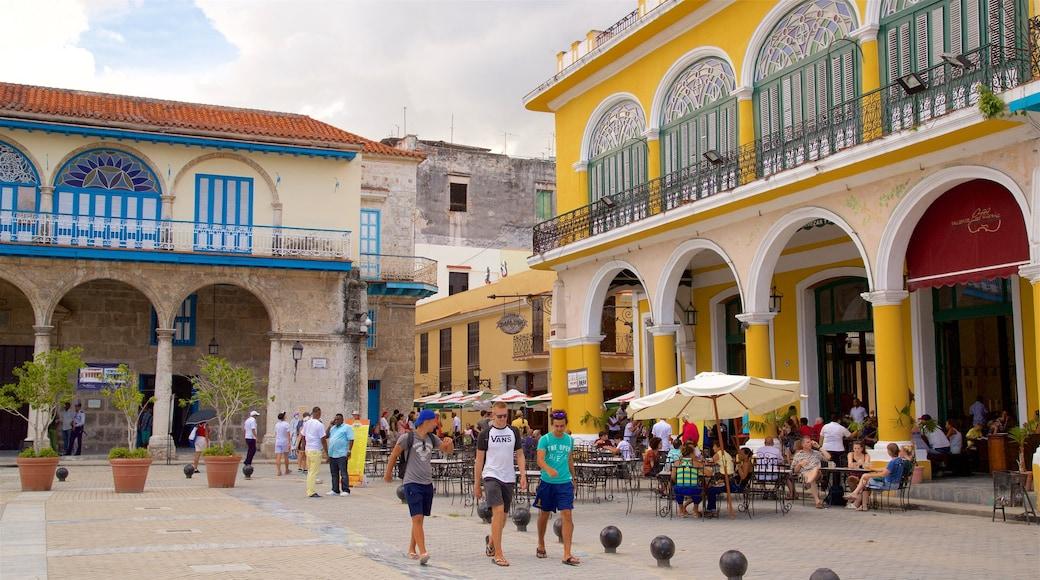 Plaza Vieja featuring tori sekä pieni ryhmä ihmisiä