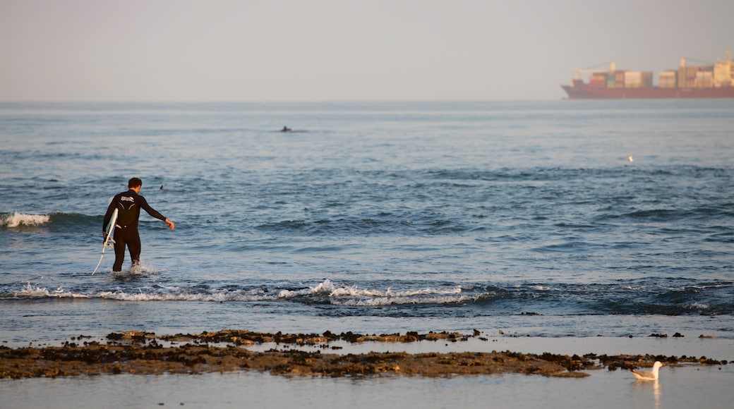 Swakopmund das einen Surfen, allgemeine Küstenansicht und Wellen