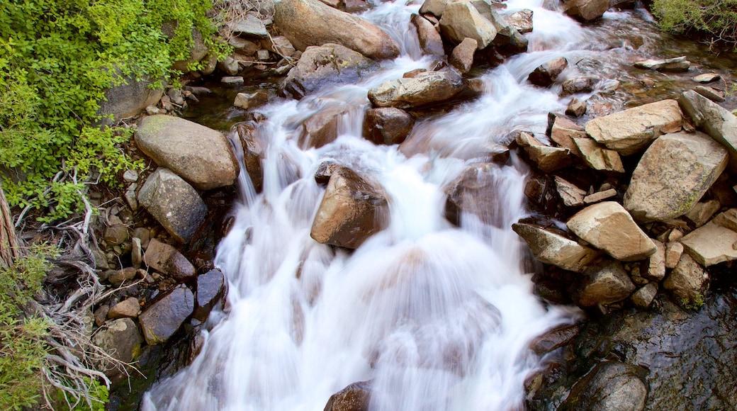 Eagle Falls Trail featuring a river or creek
